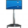 Höhenverstellbarer LCD LED Standfuß auf Rollen PL1C 26-55 Zoll
