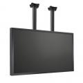 PUSG95 LCD LED Deckenhalterung bis 98 Zoll
